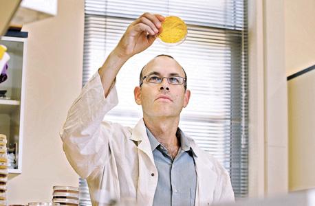 """פרופ' קישוני במעבדה שלו בטכניון. """"אנחנו בעצם לומדים את החוויה של החיידק בתוך הגוף"""""""