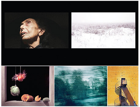 """עבודות מסדרות קודמות של גרשט. """"נקודת ההתחלה שלהן מבחינת הצופה היא רגע המוות שלהן מבחינתי"""", צילום: אורי גרשט"""