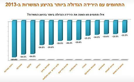 התחומים שהראו ירידה משמעותית במהלך 2013