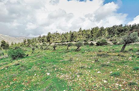 שטחים פתוחים ליד ירושלים