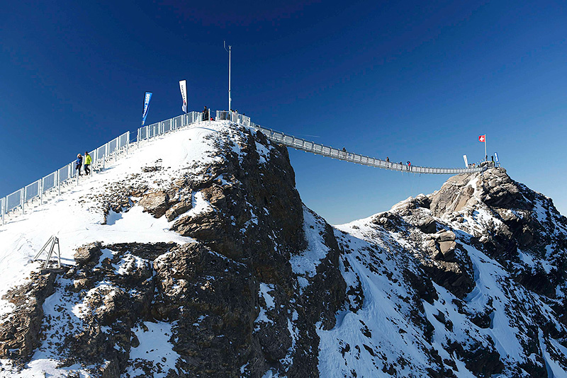הגשר. אמור לשרוד בתנאי מזג האוויר הקשים , צילום: רויטרס
