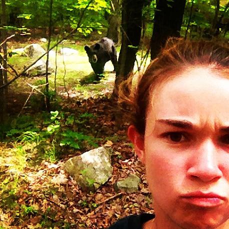 סלפי עם דוב. זה לא רעיון טוב