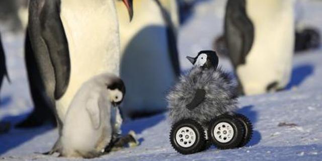 פלישת הפינגווין הסייבורג