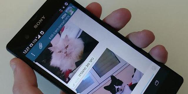 אפליקציית ווטסאפ, צילום: ניצן סדן