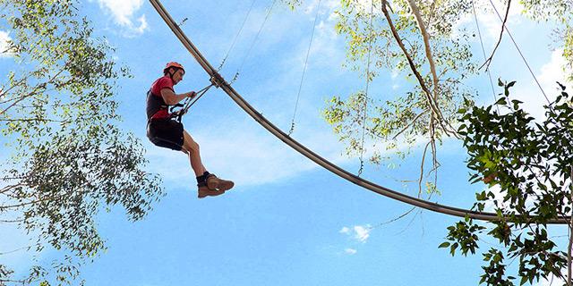 , צילום: treetopcrazyrider.com.au