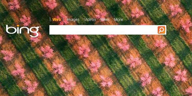 מיקרוסופט: מנוע החיפוש בינג יוצפן במלואו