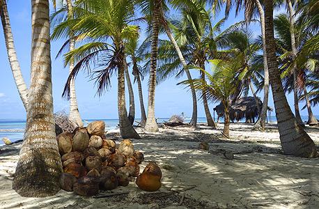 """איי """"סאן-בלאס"""" בקריביים. המקום המושלם לחופשת """"בטן-גב"""""""