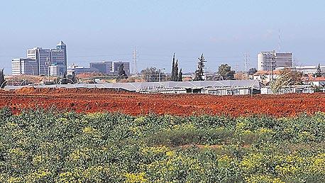 קרקע חקלאית במרכז הארץ. אילוסטרציה