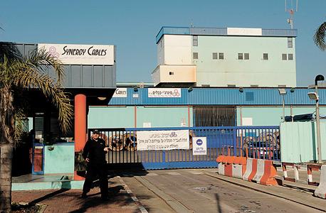 מפעל סינרג'י