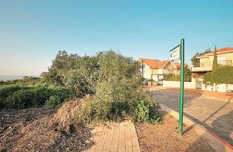 שטח המריבה, 13 דונם, בקצה המערבי של זכרון יעקב