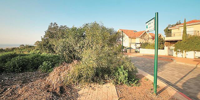 נדחתה תביעת תושבי זכרון יעקב נגד הקצאת שטח לבית כנסת