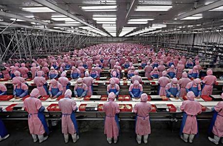 פועלים במערך ייצור של פוקסקון בסין