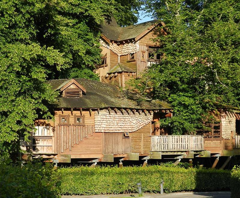 הזדמנות להגשים חלום ילדות, מסעדה בבית על עץ