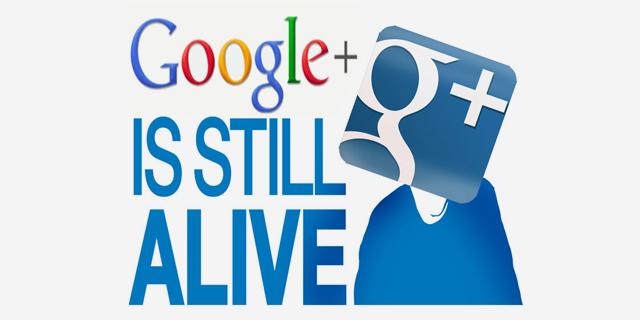 ספיישל: גוגל+ טרם התפגרה. האם יאכל יוסי את כובעו?