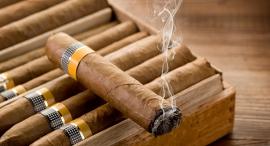 סיגר, צילום: שאטרסטוק