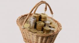 סל מטבעות, צילום: שאטרסטוק