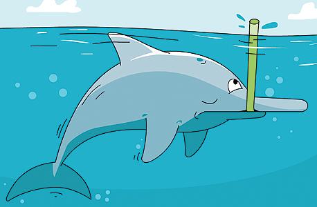 אשף השינה הקצרה הוא הדולפין נהרן האינדוס, שחייב לשחות ללא הפסקה כדי לא להיסחף. אז הוא מסתפק בפרצי שינה שנמשכים כמה שניות עד דקה, איור: ערן מנדל