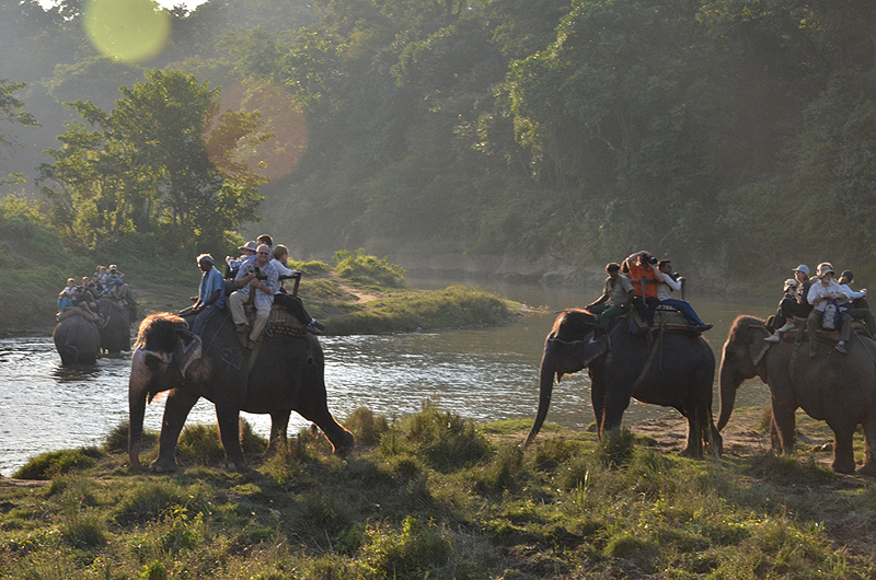 רכיבה על פילים בספארי בנפאל, צילום: Flickr / Chris Shervey