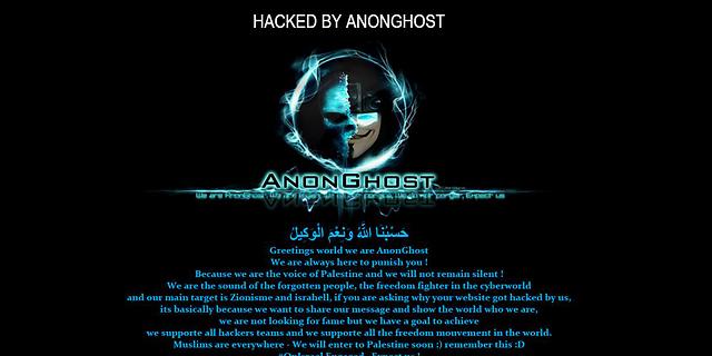 ההאקרים של אנונימוס מתמחים בעיקר בהשחתת אתרים