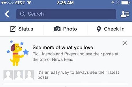 פיד הפייסבוק