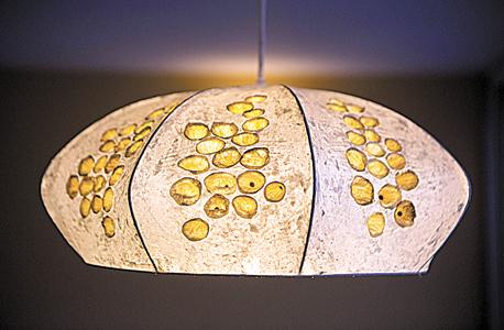 גוף תאורה מצמח בר גביע של המעצבת נעמה שטייגמן