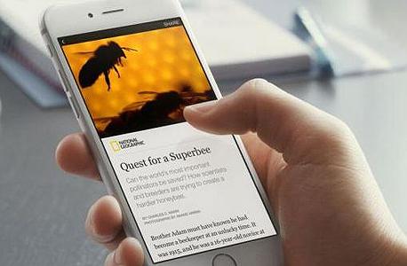 פייסבוק חדשות instant stories