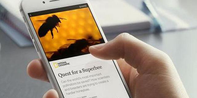 והרי החדשות: הרשתות החברתיות נגד הפצת ידיעות שקריות