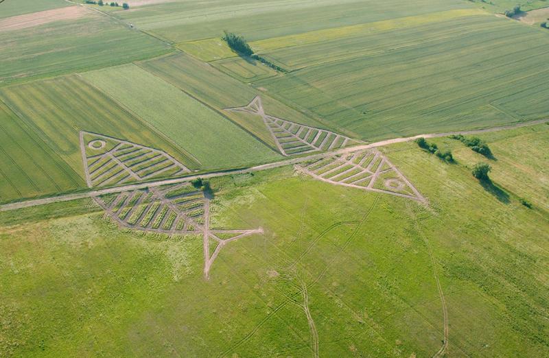 גבול פולין - אוקראינה. שתלו זרעים בצורת דג, צילום: polinst.kiev.ua