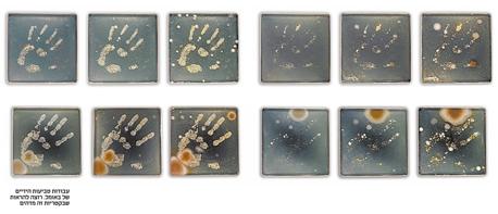 עבודות טביעות הידיים של האמנית סוניה באומל