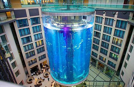 אקוודום אקוואדום ברלין מלון רדיסון בלו 3, צילום: אקספדיה