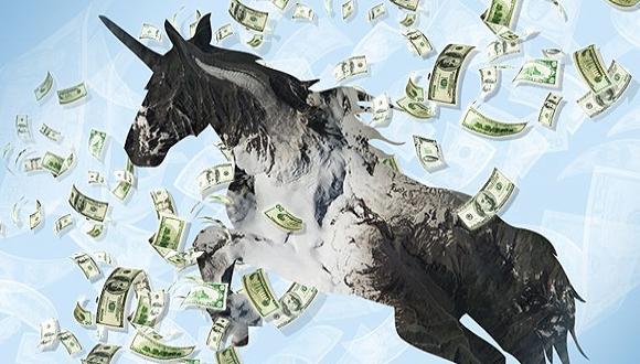 Unicorn. Photo: Courtesy