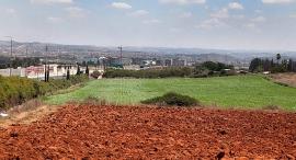 קרקע לבנייה ב כפר סבא, צילום: אוראל כהן
