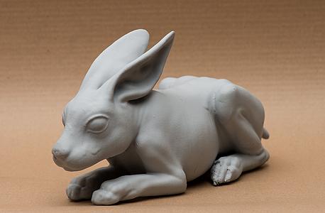 ארנבת מודפסת. שליטה מדהימה בתוכנות מתקדמות, דיוק נדיר והקפדה על הפרטים הקטנים יוצרים מוצר גולמי שהוא ייצור מפעים ונוגע ללב