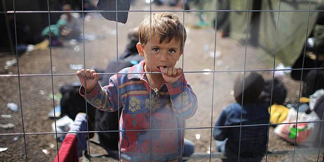 לא מחכים לפתרון מדיני: אזרחי אירופה קולטים פליטים בבתיהם
