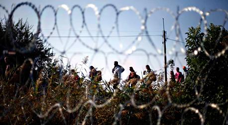 פליטים בגבול סרביה-הונגריה, השבוע, צילום: איי פי