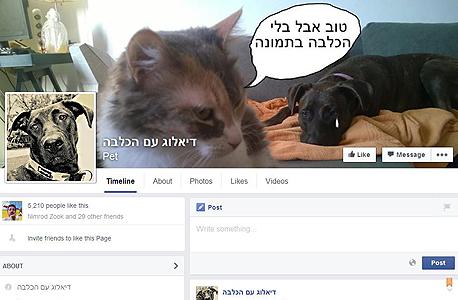 דיאלוג עם הכלבה FB פייסבוק קבוצות ישראל, צילום: פייסבוק