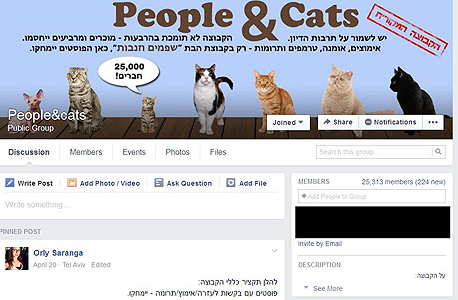 חתולים FB פייסבוק קבוצות ישראל, צילום: פייסבוק