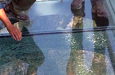 רצפת הזכוכית הסדוקה בגשר