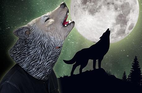 זאב זאב זאב