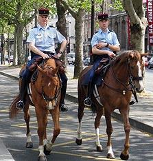 שוטרים צרפתים. לא התלהבו מוויסטה