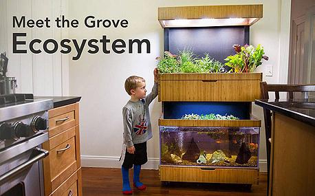 המערכת של Grove Labs