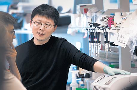 """זאנג במעבדתו במכון ברוֹד. """"מוטציה של שלוש עיניים נשמעת כמו סיבוך קיצוני, אבל העובדה היא שעוד לא הבנו את כל ההשלכות של שינויים גנטיים"""""""