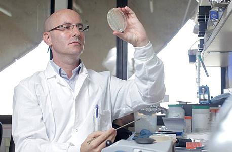"""קימרון במעבדתו באוניברסיטת תל אביב, אוחז צלוחית מעבדה שמכילה את מערכת CRISPR-Cas9. """"האנזים יחתוך את הדנ""""א בדיוק בנקודה שנגיד לו"""""""