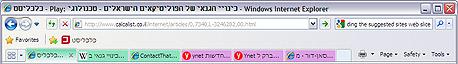 דפדפן אקספלורר, צילום מסך: IE8