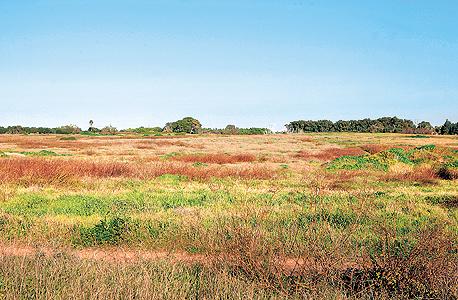 מתחם אפולוניה, מצפון לשכונת נוף ים בהרצליה. הקרקע טעונה שיקום, צילום: עמית שעל