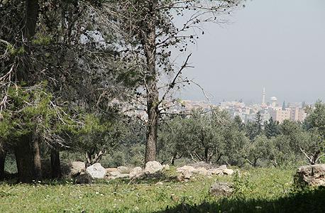"""השטח ליד ג'דיידה־מכר שעליו תקום העיר הערבית. """"התוכנית צריכה להתייחס למאפיינים הייחודיים של המגזר"""""""