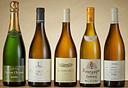 יינות מפסטיבל היינות הלבנים, צילום: עמרי מירון