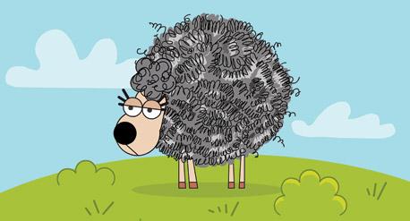 לכבשים יש צמר פלדה?