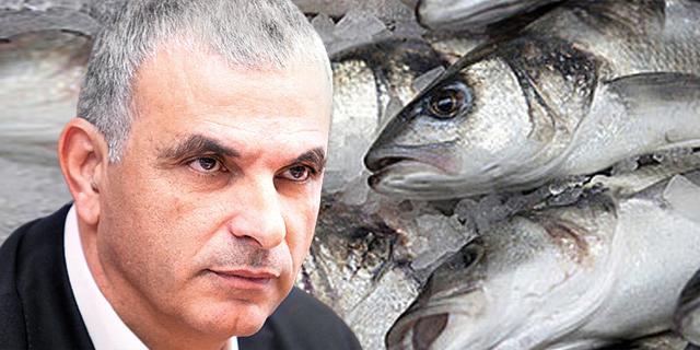מבקר המדינה בודק את ההליך שהביא להורדת המכס על דגים וירקות קפואים