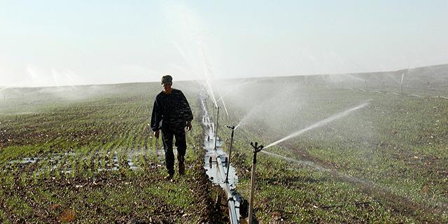 מחירי המים לחקלאות: יד אחת מוזילה - השנייה מייקרת